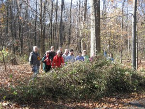 12 people in forest at brush pile