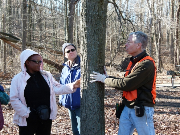 Jim Hurley, ARMN VP and Chair of Service Committee, explains keys to winter tree identification.