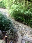 Kasha's garden.9