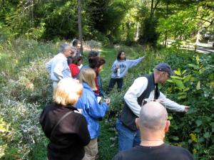 Identifying non-native invasive plants