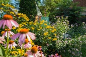 photo-3-toni-garden