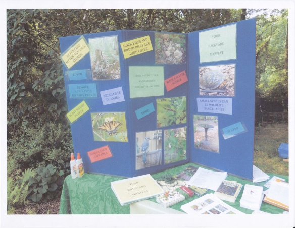 Photo of an ARMN backyard habitat display