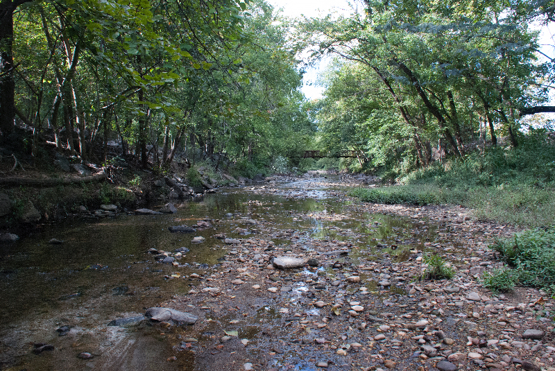 Photo of Four Mile Run Stream at Barcroft Park