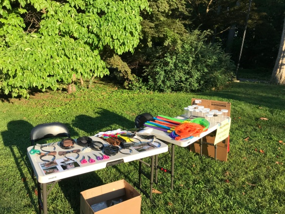 Headbands, sissors, pictures of bats, insect nets, and jars sit on folding tables in a field