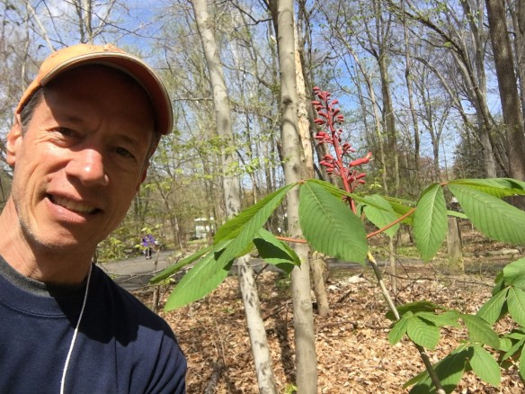 Selfie photo of ARMN member Todd Minners wearing a ball cap standing next to a flowering plant