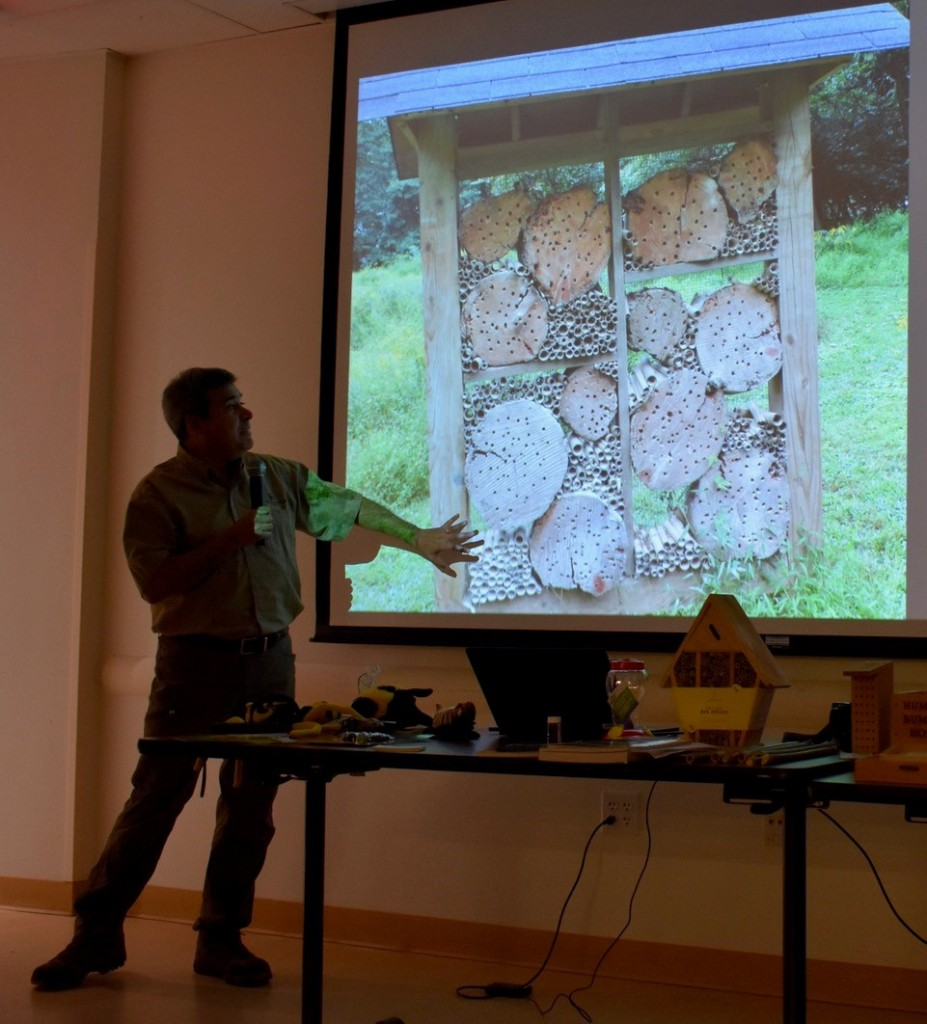 Photo of Alonso Abugattas standing in front of a projection of an image of a bee hotel