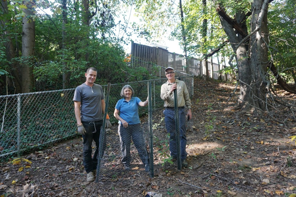 Photo of three volunteers standing behind a deer fence