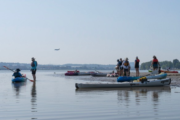 Volunteers stand on mud flats on the river. There are kayaks in the water.