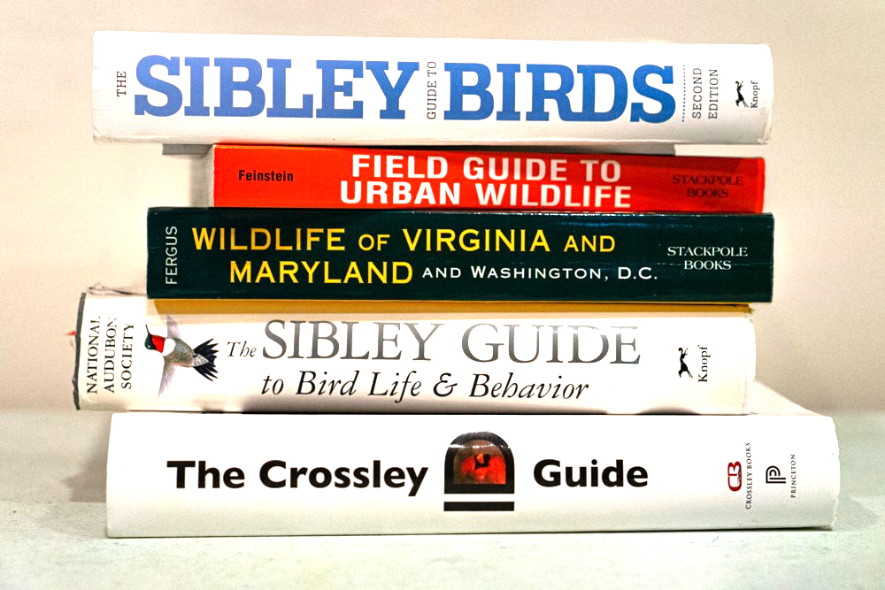 A stack of bird guide books