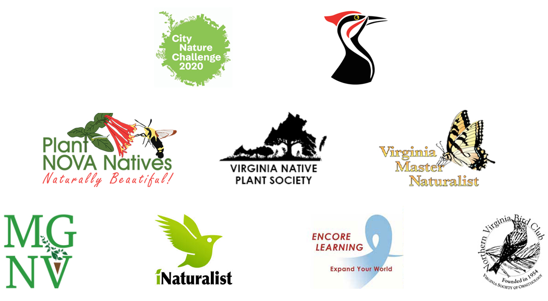 Pictures of logos from city nature challenge, plant nova natives, virginia native plant society, virginia master naturalists, iNaturalist, encore learning, and the northern virginia bird club
