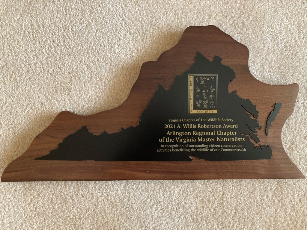 Photo of a plaque in the shape of Virginia for the A. Willis Robertson Award