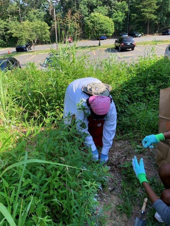 Photo of volunteer Valerie LaTortue weeding in the garden